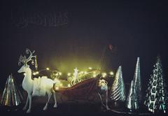 Pulling the Sleigh (Jewel Appletor aka Karalyn Hubbard) Tags: sleigh deer crystals trees mercuryglasschristmas newyear 2018 stars twinkle lights chalkboard