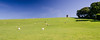 Horton Tower (Joe Dunckley) Tags: britain british dorset dorsetdowns eastdorset england english greatbritain horton hortontower uk unitedkingdom agriculture animal architecture building farm farmanimal farming field hill landscape livestock nature rollinghills rollinglandscape sheep summer sunny tower