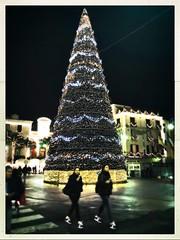(francescafiori1) Tags: lucidinatale christmas addobbi albero natale napoli sorrento italia italy