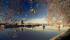 Toulouse (Francois Guinot) Tags: toulouse canoneos6d voigtlander20mm winter reflection river nature cities france