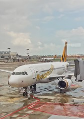 Airbus A319 of Tiger Airways at Gate F59 at Terminal 2 of Singapore Changi International Airport (UweBKK (α 77 on )) Tags: airbus a319 tiger airways gate f59 singapore changi international airport aircraft airplane plane samsung galaxy j7