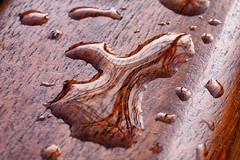 Day #3629 (cazphoto.co.uk) Tags: panasonic lumix dmcgx8 panasonic45mmf28leicadgmacroelmaritasph project365 beyond3288 071217 bench chelmerpark grain puddle raindrops reflections seat water wood chelmsford details