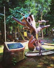 Melaka bird park - Melaka - http://4sq.com/19a9cUF #green #nature #tree #grass #travel #holiday #holidayMalaysia #travelMalaysia #Asian #Malaysia #Malacca #大自然 #草 #树木 #旅行 #度假 #马来西亚旅行 #马来西亚度假 #亚洲 #马来西亚 #发现马来西亚 #发现大马 #自游马来西亚 #马六甲 #flower #花
