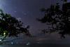 When The Skies Don't Cooperate (Lemuel Montejo) Tags: night stars sky long exposure panglao bohol sea land shore beach trees silhouette