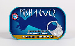 FE003 mackerel in sunflower oil (OrganicoRealfoods) Tags: fish productshot mackerel can sunfloweroil