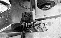 ti raserò l'aiuola ;/) (schyter) Tags: зенит12сд zenit 12 xp by kmz мир20 3520 mir20 kodak trix 400 320 135 rapri e201 spotmeter adox adonal 137 10min 20 °c epson v600 12xp m42 mc multicoated sovietcamera soviet lens sovietflektogon analogica analogic pellicola film 35mm 320iso extintion format formato blackwithe bw bn bianconero lodigiano lodi italy italia homemade development scanned basiasco