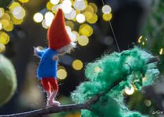 Dreamer (WiSch | Foto) Tags: kalender wischfoto lichter freinsheim dezember weihnachtsmarkt rheinlandpfalz deutschland de macromondays macro bokeh filz figur träumer traum schalfwandler memberschoicebokeh träumen