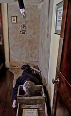 A0096LONDONb (preacher43) Tags: london westminster england 221 b baker street sherlock holmes museum musgrave ritual literature