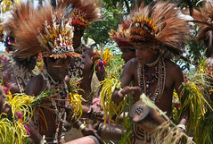 Benny and Champion in the dance (Sven Rudolf Jan) Tags: tufi papuanewguinea traditional singsing dancing