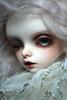 DZ YO-Carter (+Lotte+) Tags: dollzone carter