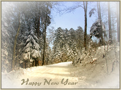 HAPPY NEW YEAR (Escara / Esther) Tags: newyear wishes winter snow