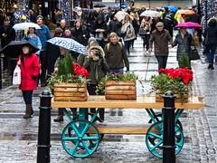 Flower Boxes in Covent Garden (garryknight) Tags: on1photoraw2018 london panasonic lumix dmctz70 coventgarden jamesstreet barrow flower box flowerbox people street candid photographer woman