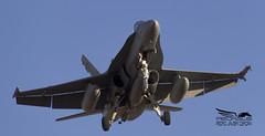 F-18 46-07 C-15-79 GANDO (Pedro Cerdan AviationPhoto) Tags: f18 hornet 4607 c1579 gando tlp 201704 flightcourse mcdonnelldouglas