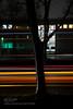 Engine (philipperavailler) Tags: ifttt 500px red winter night light car tree highway speed traffic orange dark trails dortmund autobahn langzeitbelichtung streaks long exp citylight germany longexposure lightstreaks lighttrails longexp
