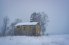 the yellow abandoned house (krøllx) Tags: gaula abandoned abandonedhouse akamphotowalk blurred cold decayed decayedhouse europe house landscape midtnorge monocle26mm monoclens monolens norway old oldhouse russianlens scandinavia season snow snowing trees trøndelag winter winterwonderland 2018010620180106dsc099943 leinstand