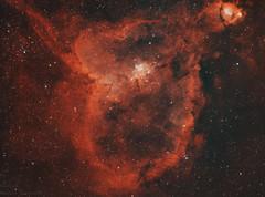Hearth nebula IC1805 (MaGeOl) Tags: nebula astrophoto astrophotography astronomy stars space sky star telescope filters dust hydrogen qhy ha colour oiii oxygen hearth ic 1805 fish red astrometrydotnet:id=nova2384069 astrometrydotnet:status=solved