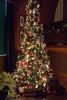 DSC03846.jpg (imfaral) Tags: biltmore christmas