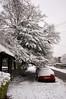 Snow Tunnel (tim ellis) Tags: snow maneyhillroad lychgate tree birmingham uk suttonpark