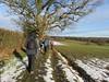 UK - Hertfordshire - Near Berkhamsted - Walking along footpath (JulesFoto) Tags: uk england hertfordshire ramblers capitalwalkers berkhamsted walking snow