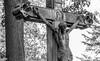 Leid mit Erlösung (Matthias_Cologne) Tags: allemagne almanya brd cologne colônia deutschland friedhof gedenken germania germany gesù grab jesus jesús jezus jésus keulen kolonia kreuz kruzifix köln melaten nrw niemcy nordrheinwestfalen atravessar attraversare begraafplaats cementerio cemitério cimetière cimitero cmentarz colonia croix cross crucifix cruzar graf grave graveyard grób kruis krzyż mezarlık tomb tombe tumba
