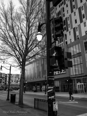 R0010390 LR (davidyouhas) Tags: u i champaign illinois streetphotography green street