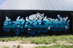 Southside! (LachMH) Tags: canon 700d rebel t5i 1855mm lens canberra lanyon polar bear graffiti snow ice cold southside art street wall building design painting spray paint frozen freezing freeze conder grass