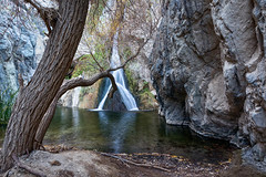 Desert Riparian (Kirk Lougheed) Tags: argusrange california darwincanyon darwinfalls deathvalley deathvalleynationalpark mohave mojave mojavedesert usa unitedstates canyon desert landscape nationalpark outdoor park riparian tree water waterfall willow