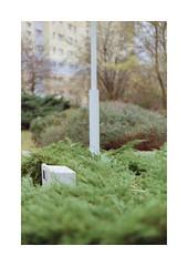 (Dennis Schnieber) Tags: 35mm kleinbild analog film color berlin lichtenberg rhinstrase