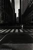 Crosswalk (johnlishamer.com) Tags: 2017 35mm bw fujineopan400 fujifilm lishamer nikonf3 slr theloop chicagoil expiredfilm film johnlishamercom pushedto800 rodinal summer sunshine