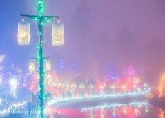Festival of Lights 2017 (8) (littlekiss☆) Tags: festivaloflights illumination christmas christmaslight nightscape winter holidayseason night vancouver vandusenbotanicalgarden littlekissphotography