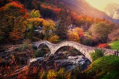 Ponte dei salti (Chrisnaton) Tags: ticino switzerland pontedeisalti verza bridge romanicbridge autumn autumncolors trees