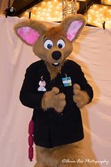 _DSC1304 (Acrufox) Tags: midwest furfest 2017 furry convention december hyatt regency ohare rosemont chicago illinois acrufox fursuit fursuiting mff2017 menagerie fursuitsaturday
