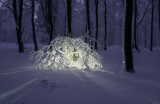 Snow light sculpture