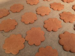 Ginger bread cookies (RundgrenR) Tags: piparkakku joulu christmas finnish