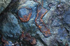 Marin Headlands Rocks (fksr) Tags: rocks colorful chert birdisland rodeobeach pacificcoast marinheadlands marincounty california