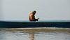 Lone monk travelling to Mingun on Irrarwaddy River, Burma (GaryColet) Tags: 2017 ayerwaddy burma mandalay mingun myanmar book monk orange river study