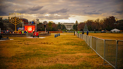 2017.12.12 National Menorah, Washington, DC USA 1377
