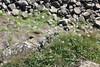 IMG_3423 (avsfan1321) Tags: ireland northernireland countyantrim unitedkingdom uk giantscauseway causewaycoast wildatlanticway basalt rock stone blackbasalt column columnarjointing columnarbasalt ocean atlanticocean landscape