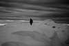 Snow man (MortenTellefsen) Tags: 2017 desember snow snø monochrome norway nature norwegian natur norsk landscape landskap blackandwhite blackandwhiteonly alone mountain svarthvitt artinbw art contrast