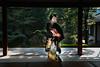 Maiko_20171105_27_32 (Maiko & Geiko) Tags: seiraiin temple koume kyoto maiko 20171105 舞妓 西来院 小梅 京都 raisuke