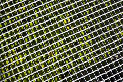 Machine de Turing (Gerard Hermand) Tags: 1708239557 gerardhermand france paris canon eos5dmarkii formatpaysage courbevoie grille grid plante plant vert green abstrait abstract abstraction