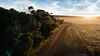 Eyre Peninsula, South Australia (Robert Lang Photography) Tags: eyrepeninsulasouthaustralia coomunga landscape aerial tree trees road rural ruralaustralia grass grasses sky clouds cloud fence fencing farm farming ranch colour color horizontal drone sun sunset sunlight sunshine sunrays pinetrees nature agriculture agribusiness robertlangphotography robertlang robertlangportlincoln robertlangaustralia wwwrobertlangcomau