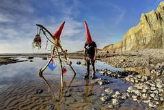 Sad Screaming Old Man (pauldunn52) Tags: beach plastic pollution traeth mawr glamorgan heritage coast wales christmas tree bottles cones paul
