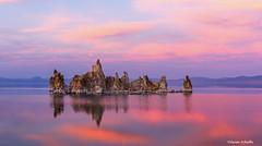 Tufa at Sunset (Photosuze) Tags: sunset sky lake monolake tufa reflection landscape california clouds pink