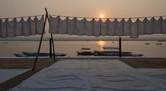 Lever de soleil sur les ghats des dhobis, Bénarès, Uttar Pradesh, Inde (Pascale Jaquet & Olivier Noaillon) Tags: bateaux ghats gange lessive linge rivière dhobis bénarès uttarpradesh inde ind