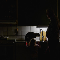 The wonders of cats (Mattias Lindgren) Tags: 50mmf18 nikond600 cat christmas drinking family feline jul kitchen mood sink square sweden tap xmas