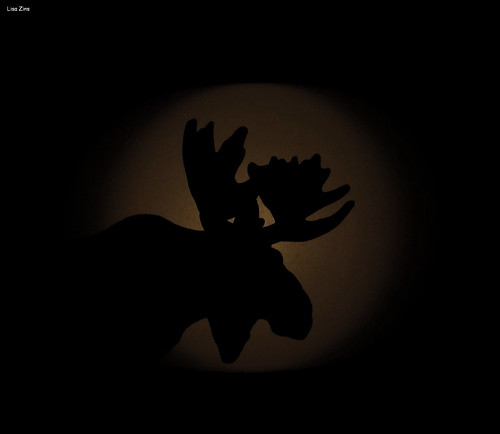 A Winter's Night (Moose Silhouette)