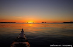Cypress, my Summer Love 2017 (Yarin Asanth) Tags: redrace redpaddleco currentdesigns cypress atmosphere lakeconstance kayaking surface water sunset orange sundown silence calm gerdkozikfotografie gerdkozikyarinasanth yarinasanthphotography gerdmichaelkozik