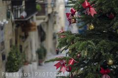 Christmas in Malta (freshandfun) Tags: tree christmas christmastree decoration green outdoor winter malta valletta