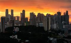 City waking up (maison_2710) Tags: city building sunrise sky skyline golden hour singapore marina bay street architecture